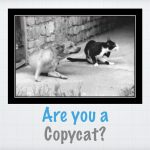 are-you-a-copycat